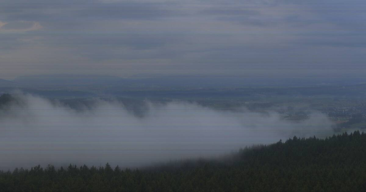 Frankenburg Aussichtsturm Göblberg 800 m